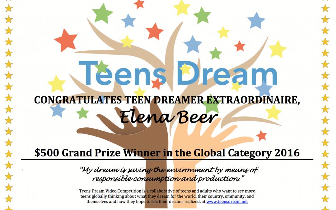 Meet the 2016 Winners of Teens Dream!