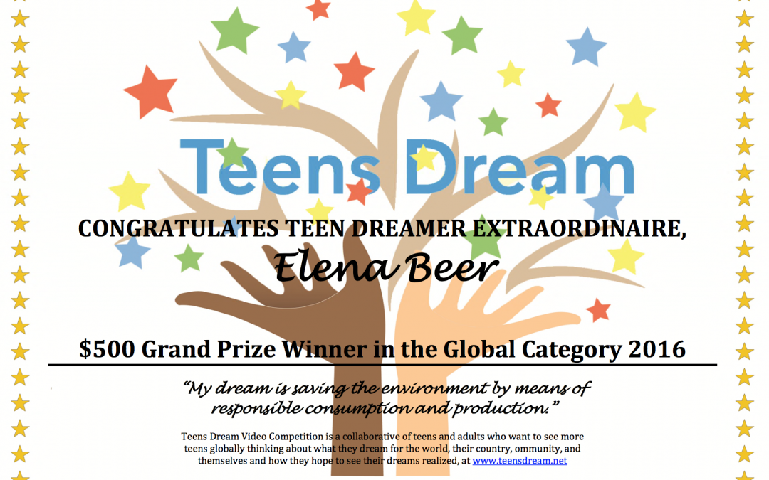 Meet the 2016 Winners of Teens Dream!