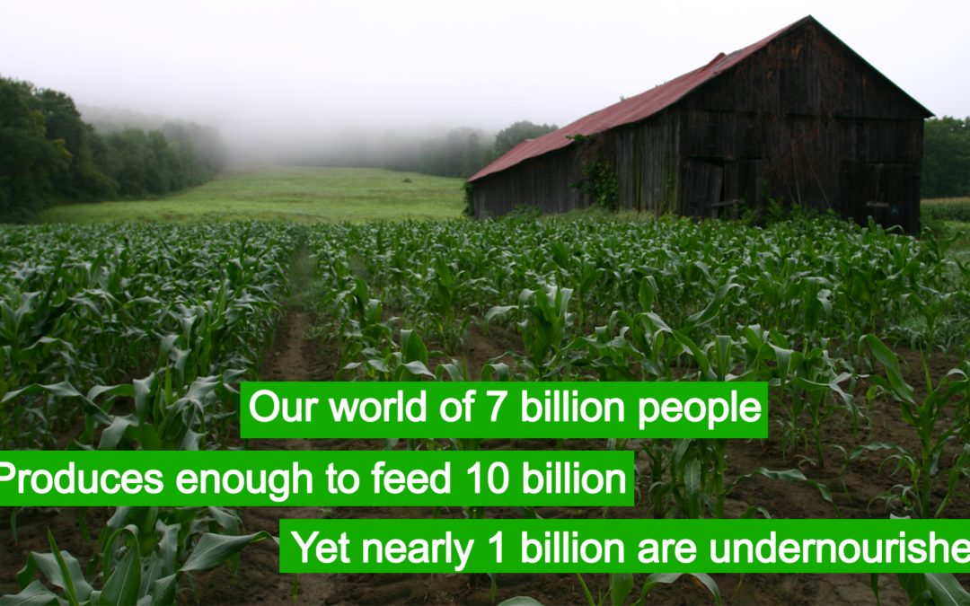 1 Billion are Undernourished