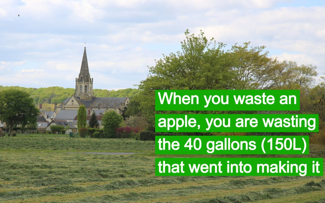 A wasted apple is wasted water